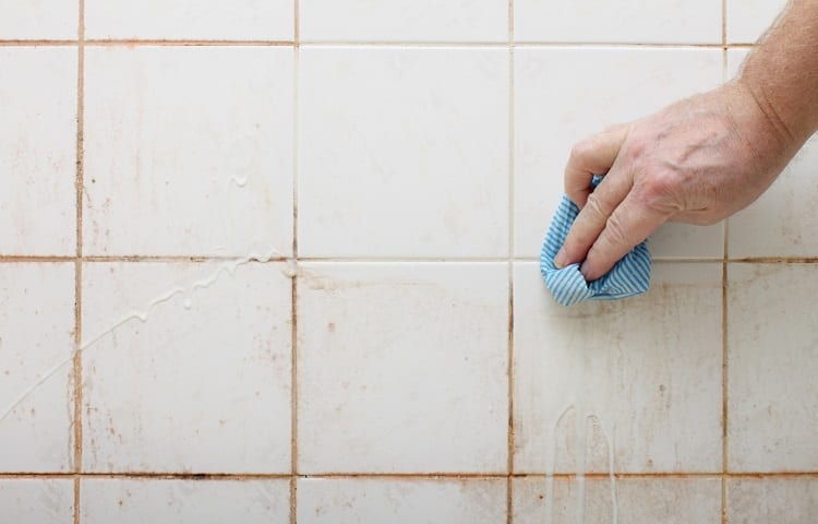 cleaning dirty shower and bathroom tiles with mould