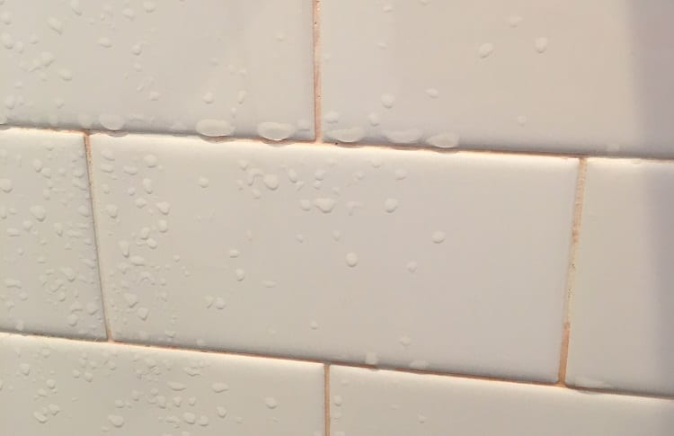 pink mold on bathroom tiles